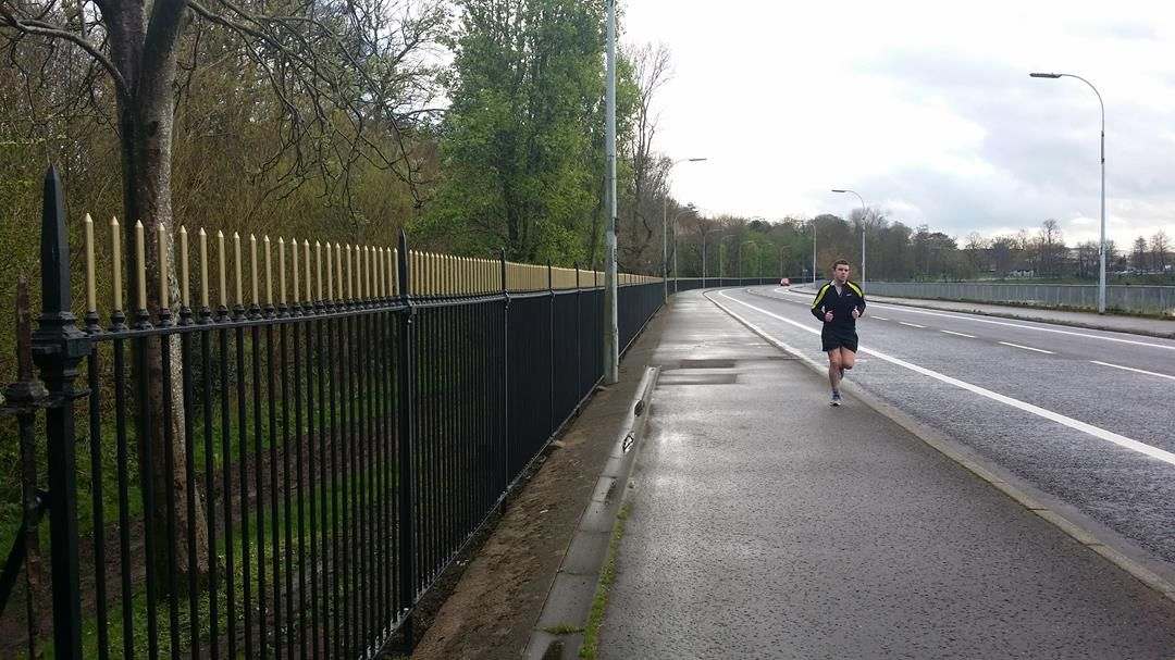 Ormeau-Park-railings