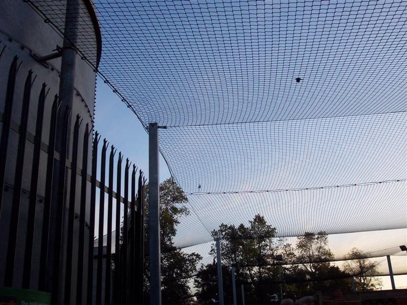B08-Irfen-Ballstop-Netting-89