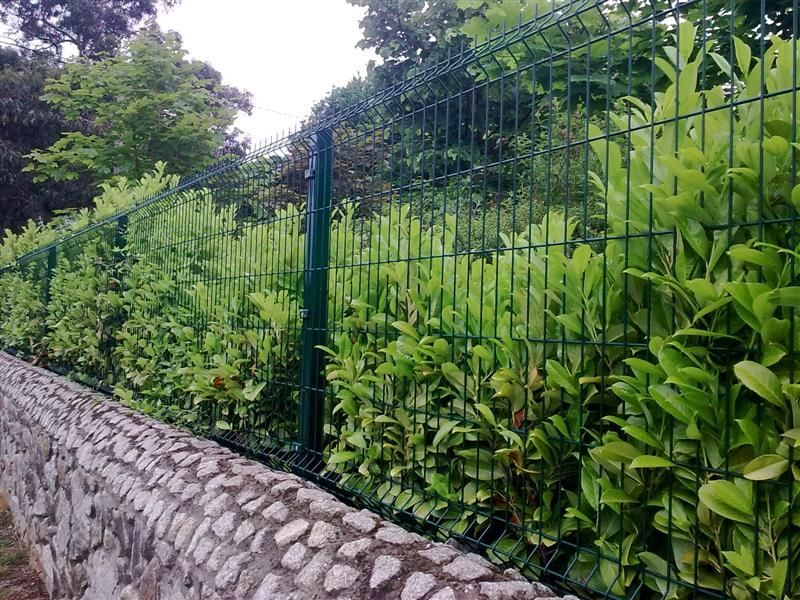 Irish Fencing Railings Ltd. Mesh Perimeter Range Kylemore 200x50mm V Mesh 21