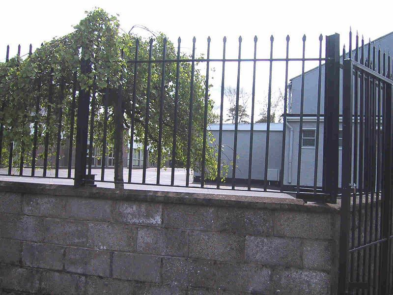 Irish-Fencing-Railings-Ltd.-Railings-Range-C09-Provinces-Range-Leinster-42-