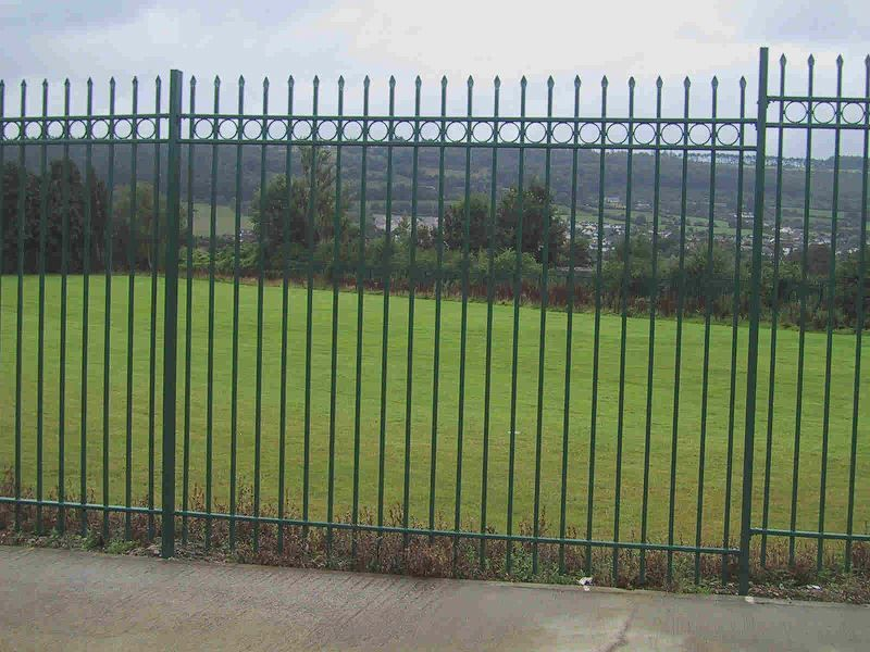 Irish-Fencing-Railings-Ltd.-Railings-Range-C10-Provinces-Range-Munster-14