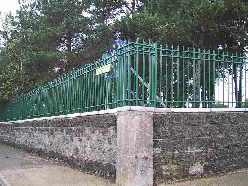 Irish-Fencing-Railings-Ltd.-Railings-Range-C10-Provinces-Range-Munster-16