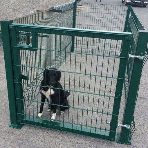 Iirish-Fencing_Dogrun