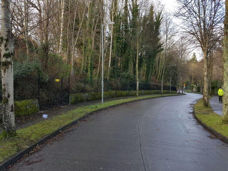 Irish-Fencing-Services-Fences-Gates-and-Railings-60