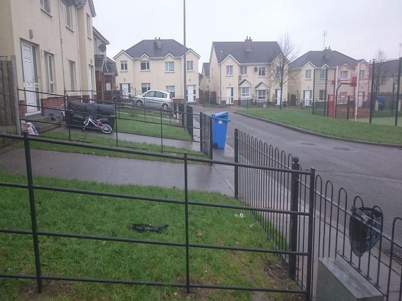 IrishFencingCork_BoundaryRailings