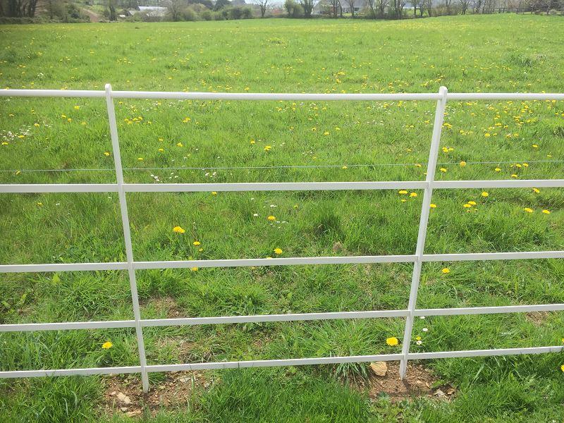 Irish Fencing Services Killarney Estate Railing9